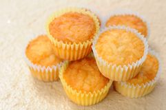 Mini muffins Royalty Free Stock Image