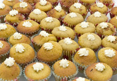 Mini muffins z śmietanką zdjęcia royalty free