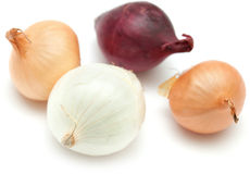 Mini onions isolated on white Royalty Free Stock Images
