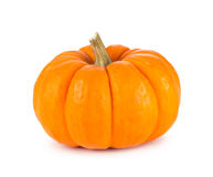Mini Orange Pumpkin Isolated on White Stock Photography