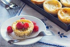 Mini Passionfruit Cheesecakes con las frambuesas Fotografía de archivo libre de regalías
