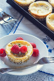 Mini Passionfruit Cheesecakes with Raspberries. A mini passion fruit cheesecake on a plate served with fresh raspberries. The cheesecakes are in a metal tray Stock Image