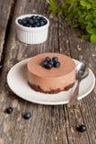 Mini-pastel de queso y galletas y arándanos del chocolate Foto de archivo