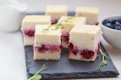 Mini pasteles de queso con las bayas Imagen de archivo