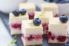 Mini pasteles de queso con las bayas Imágenes de archivo libres de regalías