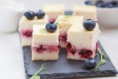Mini pasteles de queso con las bayas Foto de archivo libre de regalías