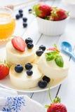Mini pasteles de queso con las bayas y la menta frescas en el fondo blanco imagen de archivo