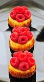 Mini pasteles de queso de la frambuesa foto de archivo libre de regalías
