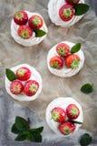 Mini- pavlova Royaltyfria Bilder