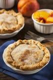 Mini Peach Pie Dessert imagens de stock royalty free
