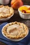 Mini Peach Pie Dessert Arkivfoto
