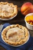Mini Peach Pie Dessert Arkivbilder