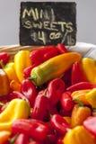 Mini peperoni dolci dolci Fotografia Stock Libera da Diritti