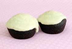 Mini petits gâteaux de chocolat végétalien Photographie stock