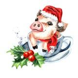 Mini Pig avec le chapeau de Noël dans la tasse de thé Symbole de l'an neuf Illustration tirée par la main d'aquarelle, d'isolemen Photos stock