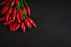 Mini pimentas de pimentão encarnados Imagem de Stock