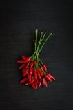 Mini pimentas de pimentão encarnados Imagem de Stock Royalty Free