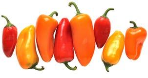 Mini pimientas coloridas Foto de archivo libre de regalías