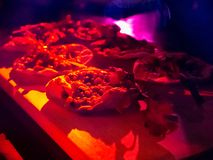 Mini pizza on a wooden Board, in red-purple lighting. stock image