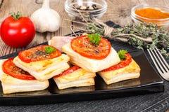 Mini pizze, kulebiaki z pomidorem i Oregano, Obraz Stock