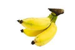 Mini plátanos Foto de archivo libre de regalías