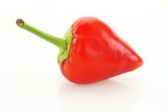 Mini plan rapproché rouge de poivre de piments Photo stock