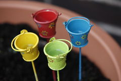 Mini Planters Bucket. Colourful miniature planters buckets used for garden decoration royalty free stock photo