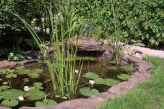 Mini pond Royalty Free Stock Photos