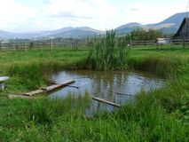 Mini pond on the territory of a rural house surrounded by a wooden hedge. Used also for washing clothes.