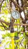 Mini prysznic drzewna maszyna z natury tłem Obrazy Royalty Free