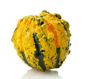 Mini Pumpkin Royalty Free Stock Photography