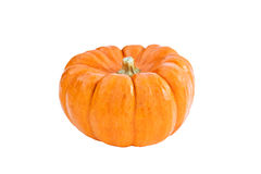Mini Pumpkin Isolated Stock Images