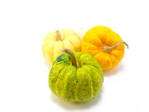 Mini pumpkin Stock Photography