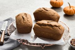 Mini pumpkin loaves stock images