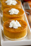 Mini Pumpkin Pies for Holiday Celebrations Royalty Free Stock Photos