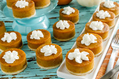 Mini Pumpkin Pies for Holiday Celebrations Stock Image