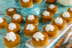 Mini Pumpkin Pies for Holiday Celebrations Royalty Free Stock Images