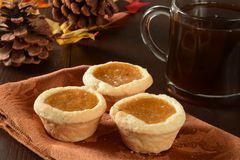 Mini pumpkin pies Royalty Free Stock Image
