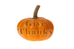 Mini pumpkin says Give Thanks; Thanksgiving Stock Photos
