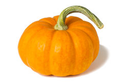 Mini Pumpkin Royalty Free Stock Images