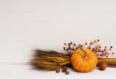 Mini Pumpkin, Wheat, Berries against White Clapboard Wall. One mini pumpkin in lower right corner, berries, wheat grass, leaning against white beadboard wall Royalty Free Stock Photo