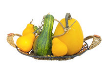 Mini pumpkin in wicked wooden basket isolated on white Stock Photo