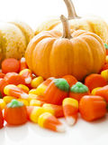 Mini Pumpkins Stock Images