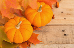 Mini Pumpkins and Fall Leaves Stock Photos