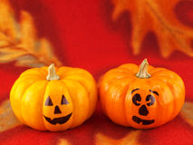 Mini Pumpkins with Funny Faces on a Red Autumn Clo Stock Image