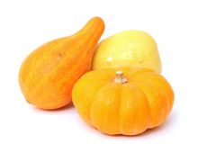 Mini pumpkins and gourd Stock Photo