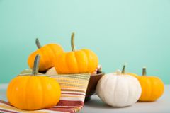 Mini pumpkins on green. Orange and white mini pumpkins on a pale green background Stock Photos