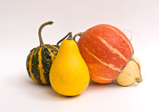 Mini Pumpkins Isolated Stock Photos