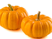 Mini Pumpkins Isolated 3 Stock Photo