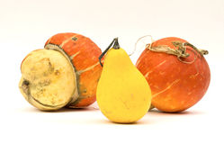 Mini Pumpkins Isolated on a White Royalty Free Stock Photography